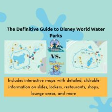 Typhoon Lagoon vs Blizzard Beach – The Definitive Guide to Disney World Water Parks